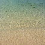 朝のウォーキング沖縄編。ビーチを見てきました。