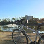 【サイクリング日記】城北公園〜毛馬〜長柄から北上して帰宅